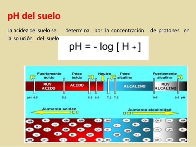Ph del suelo para que sirve saber el ph maneras de for Como saber si me afecta clausula suelo