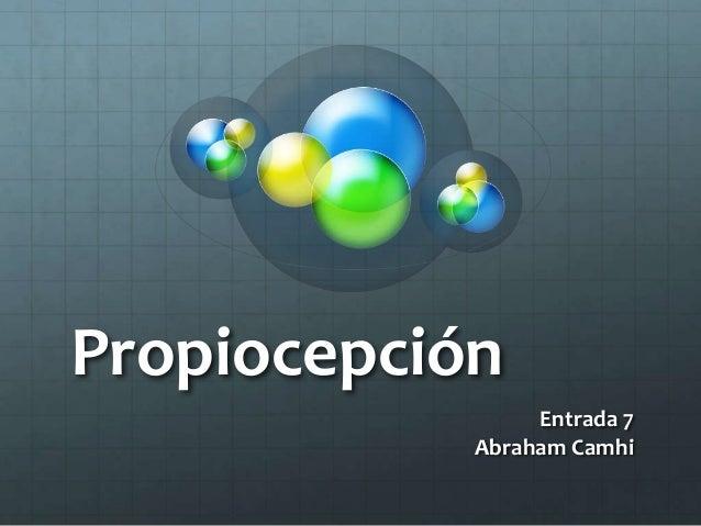 Propiocepción Entrada 7 Abraham Camhi