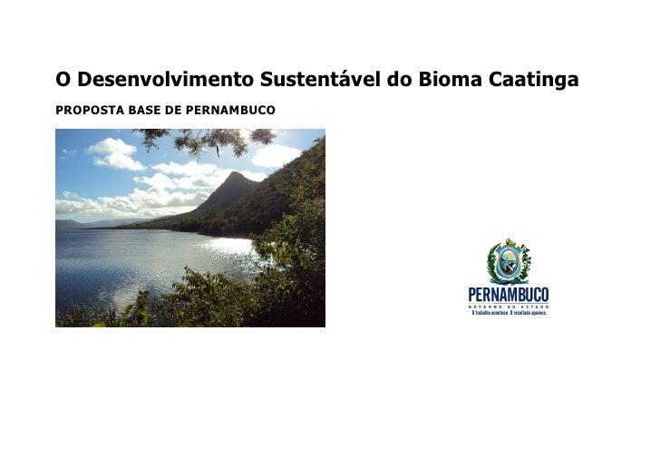 Proposta governo de pernambuco   bioma caatinga