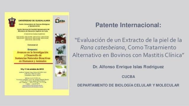 Propuesta de creación del  laboratorio de  estudio de sustancias  naturales de aplicación biotecnológica