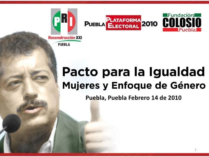 Puebla, Puebla Febrero 14 de 2010                                         1