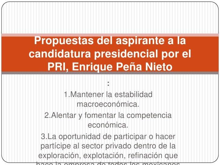 Propuestas del aspirante a la candidatura presidencial por