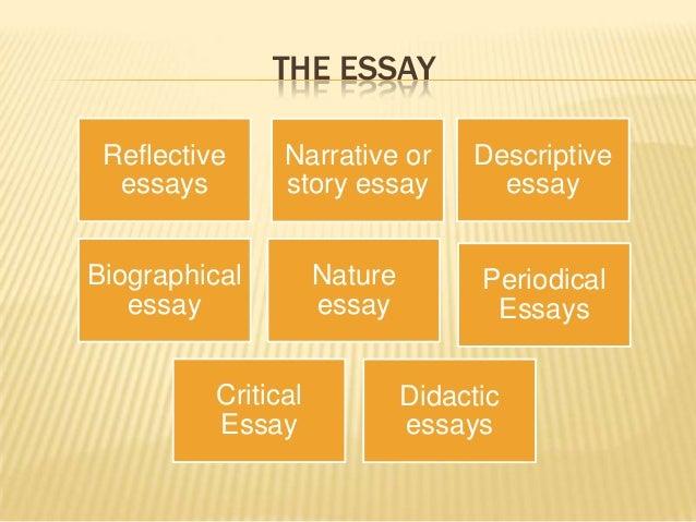 american romances essays