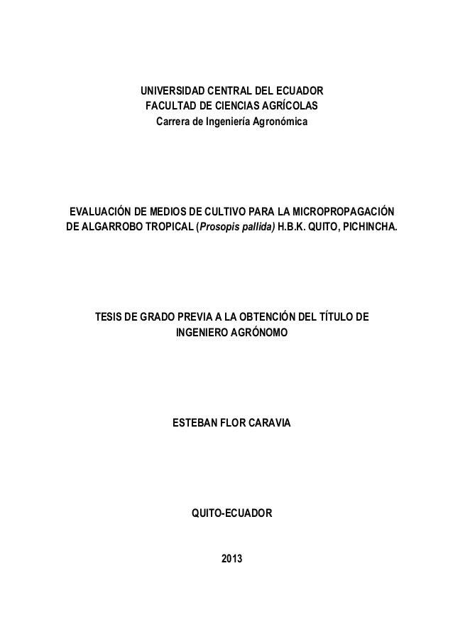 UNIVERSIDAD CENTRAL DEL ECUADOR               FACULTAD DE CIENCIAS AGRÍCOLAS                 Carrera de Ingeniería Agronóm...
