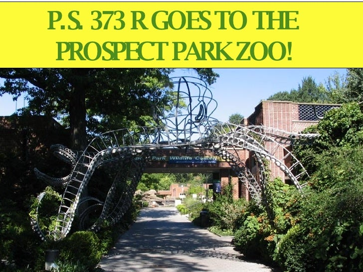 P.S. 373 R GOES TO THE  PROSPECT PARK ZOO!