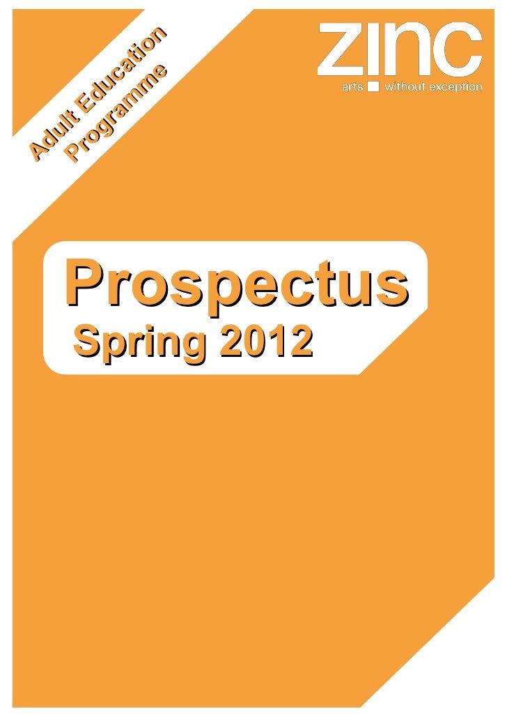 Zinc - Prospectus  adult education programme