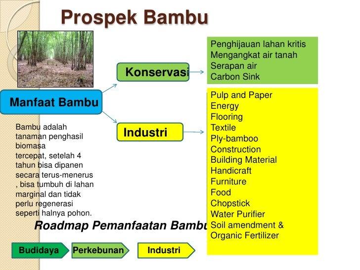 Prospek Bambu                                        Penghijauan lahan kritis                                        Menga...