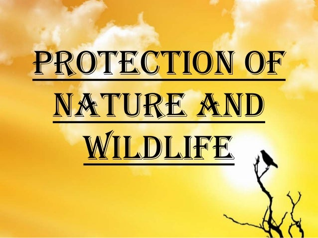 PROTECTION OF NATURE AND WILDLIFE