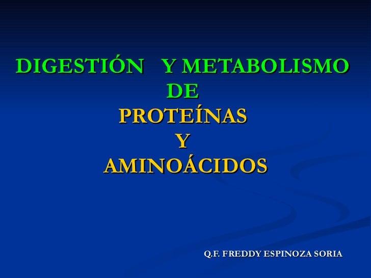 DIGESTIÓN  Y METABOLISMO   DE   PROTEÍNAS   Y   AMINOÁCIDOS <ul><li>Q.F. FREDDY ESPINOZA SORIA </li></ul>