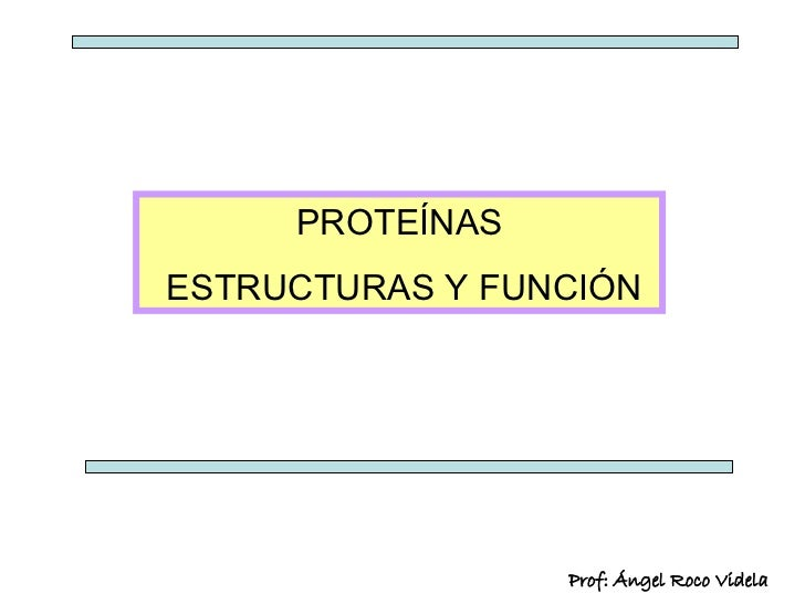 PROTEÍNAS ESTRUCTURAS Y FUNCIÓN Prof: Ángel Roco Videla