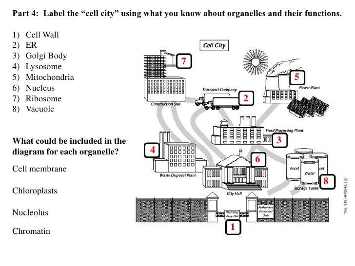 Analogy worksheet pdf