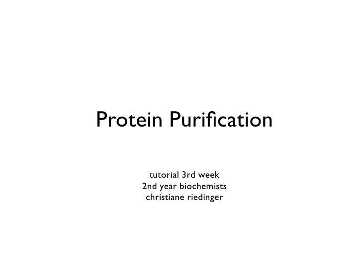 Protein Purification        tutorial 3rd week     2nd year biochemists      christiane riedinger