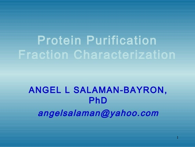 1 Protein Purification Fraction Characterization ANGEL L SALAMAN-BAYRON, PhD angelsalaman@yahoo.com