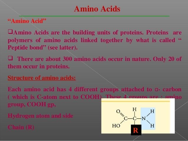 """Amino Acids""""Amino Acid""""Amino Acids are the building units of proteins. Proteins arepolymers of amino acids linked togethe..."""