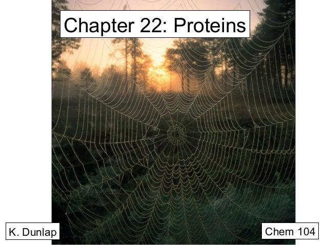 Chapter 22: Proteins  K. Dunlap  Chem 104