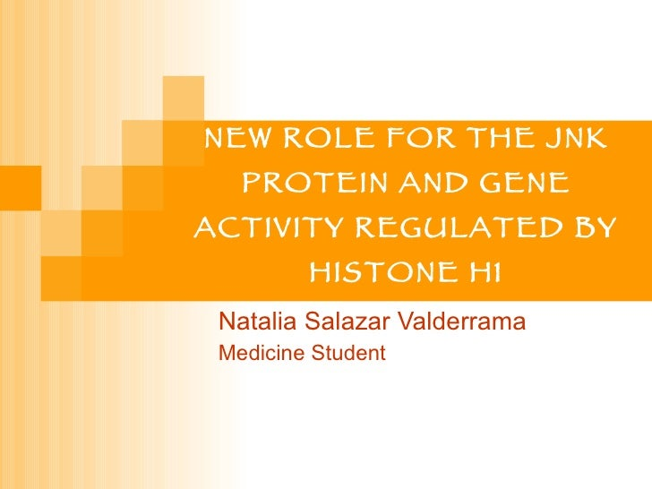 NEW ROLE FOR THE JNK PROTEIN  AND  GENE ACTIVITY REGULATED BY HISTONE H1 Natalia Salazar Valderrama Medicine Student
