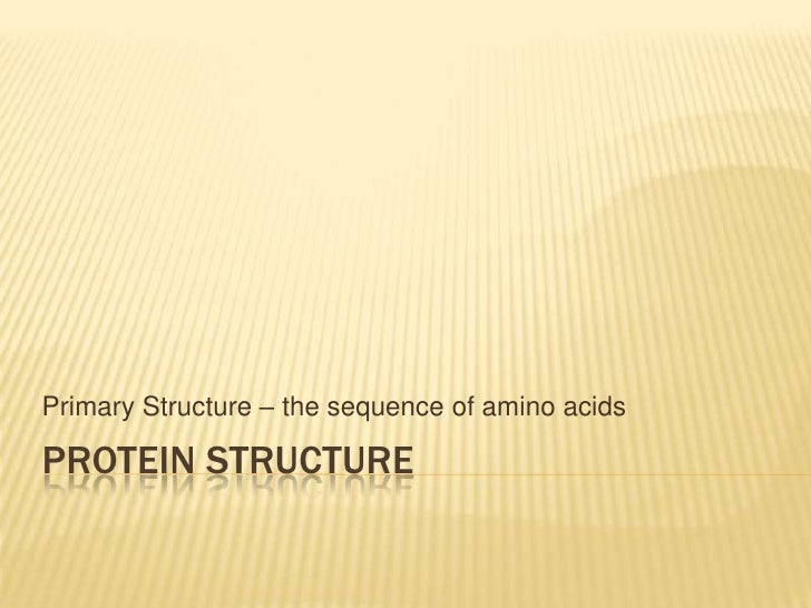 Primary Structure – the sequence of amino acidsPROTEIN STRUCTURE