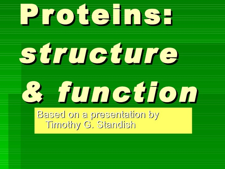 Proteins:  structure & function Based on a presentation by Timothy G. Standish