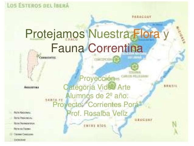 """Protejamos Nuestra Flora y Fauna Correntina Proyección Categoría Video Arte Alumnos de 2º año. Proyecto: """"Corrientes Porá""""..."""