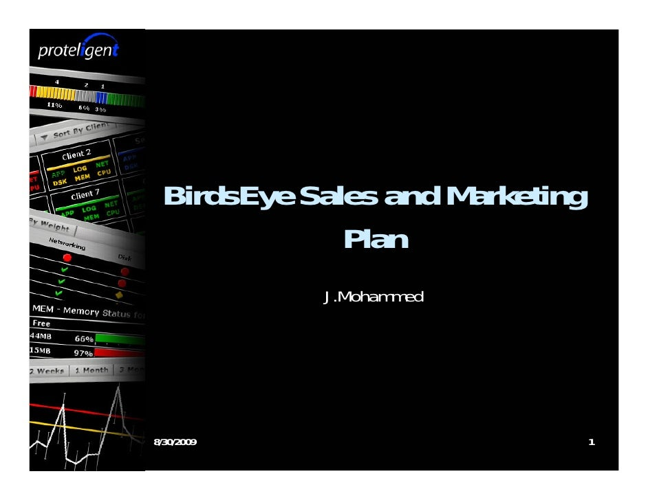 BirdsEye Sales and Marketing              Plan             J.Mohammed     8/30/2009                       1
