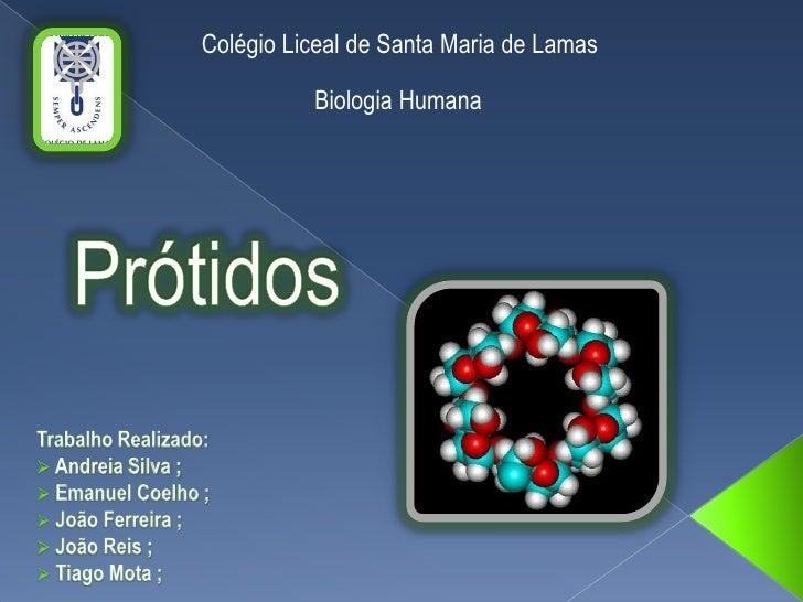 Colégio Liceal de Santa Maria de Lamas<br />Biologia Humana<br />Prótidos<br />Trabalho Realizado:<br /><ul><li> Andreia S...