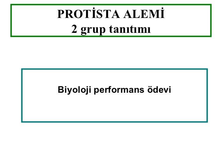 PROTİSTA ALEMİ  2 grup tanıtımıBiyoloji performans ödevi