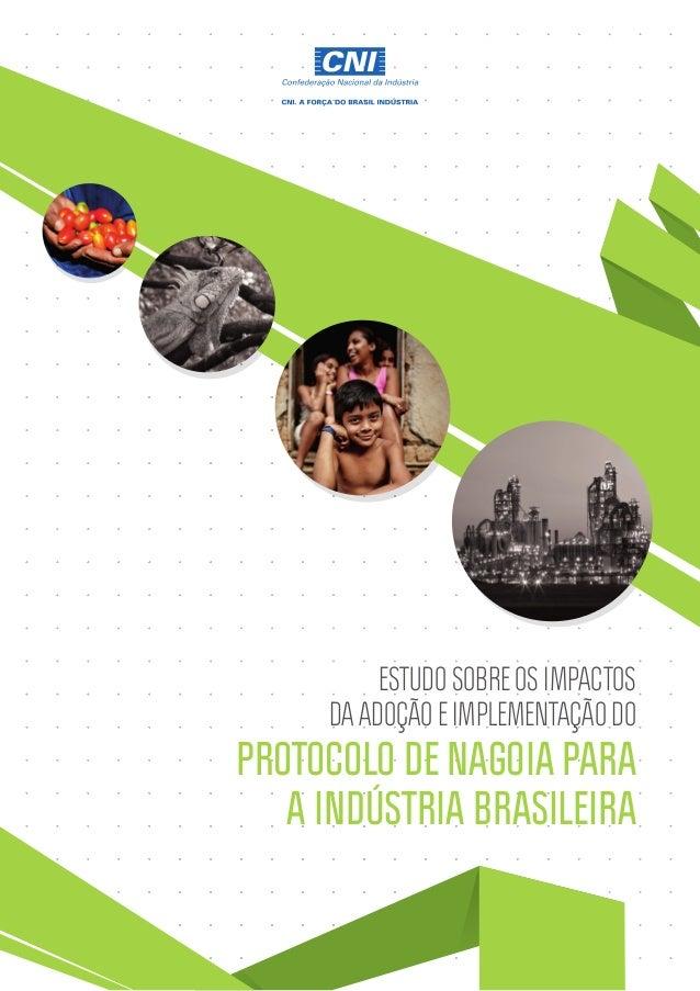 ESTUDO SOBRE OS IMPACTOS DA ADOÇÃO E IMPLEMENTAÇÃO DO PROTOCOLO DE NAGOIA PARA A INDÚSTRIA BRASILEIRA