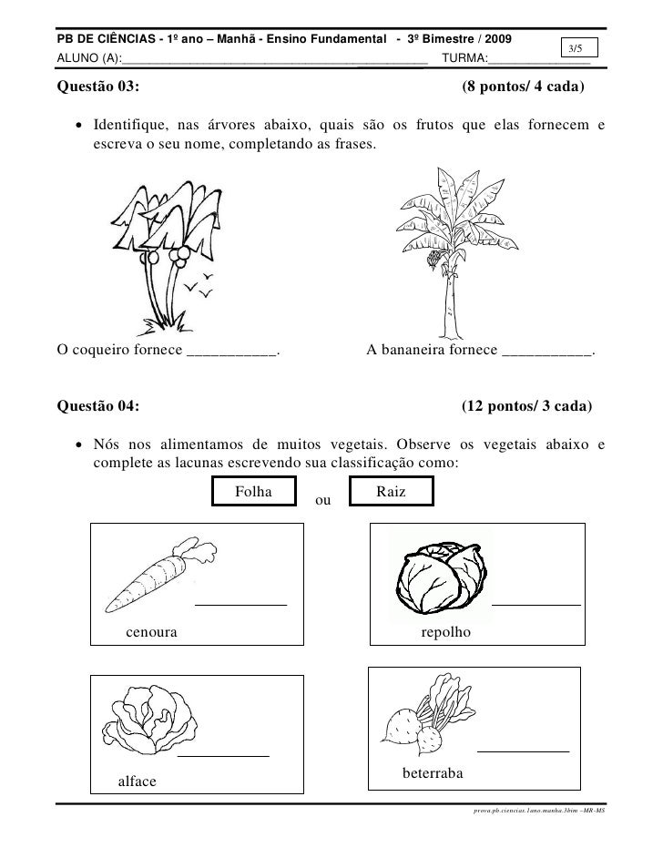 atividades horta pomar jardim educacao infantil:Prova.pb.ciencias.1ano.manha.3bim