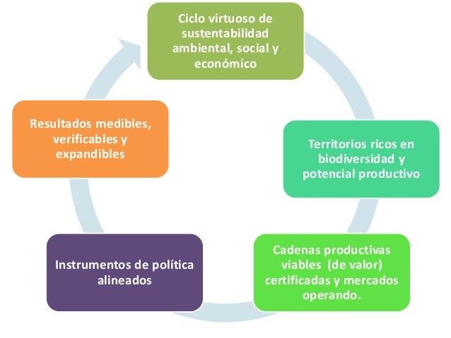 Ciclo virtuoso de sustentabilidad ambiental, social y económico Territorios ricos en biodiversidad y potencial productivo ...