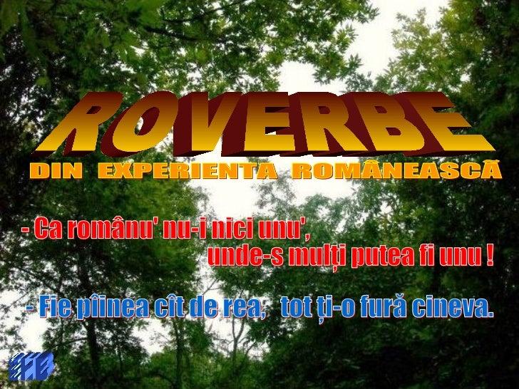 Proverbe ro 2009-hb
