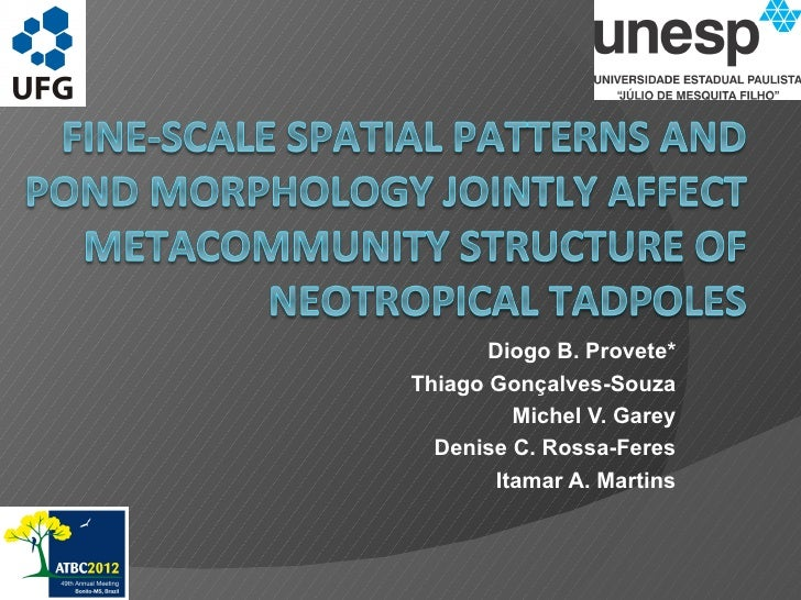 Fine-scale spatial patterns and pond morphology jointly affect metacommunity structure of Neotropical tadpoles