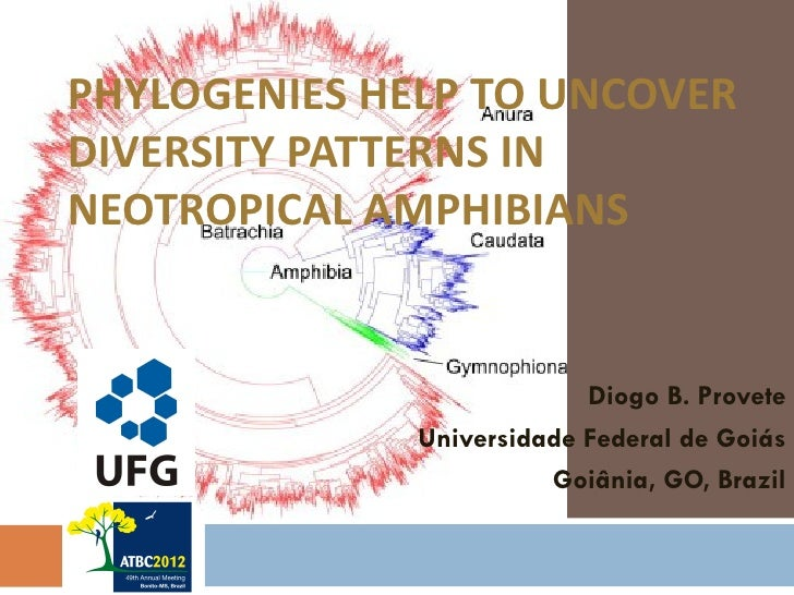 PHYLOGENIES HELP TO UNCOVERDIVERSITY PATTERNS INNEOTROPICAL AMPHIBIANS                           Diogo B. Provete         ...
