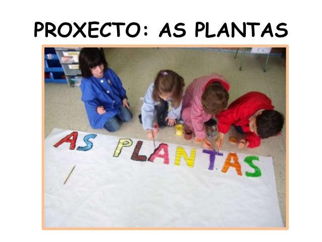 PROXECTO: AS PLANTAS