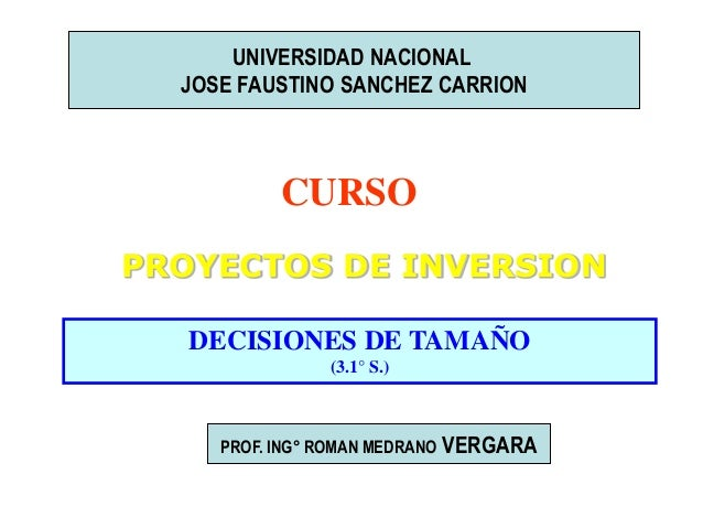 UNIVERSIDAD NACIONAL JOSE FAUSTINO SANCHEZ CARRION  CURSO PROYECTOS DE INVERSION DECISIONES DE TAMAÑO (3.1° S.)  PROF. ING...