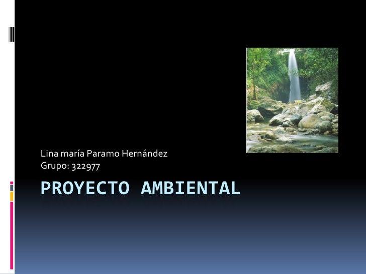 Lina maría Paramo HernándezGrupo: 322977PROYECTO AMBIENTAL