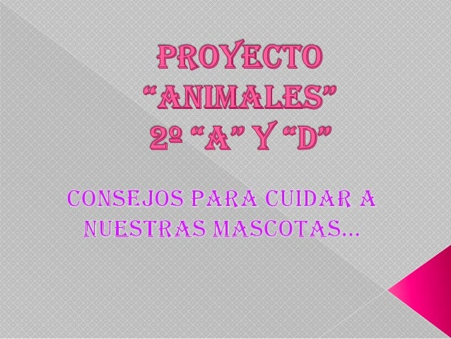 Proyecto animales