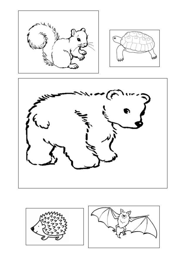 Proyecto animales en otoño, fichas, dibujos, y demás recursos