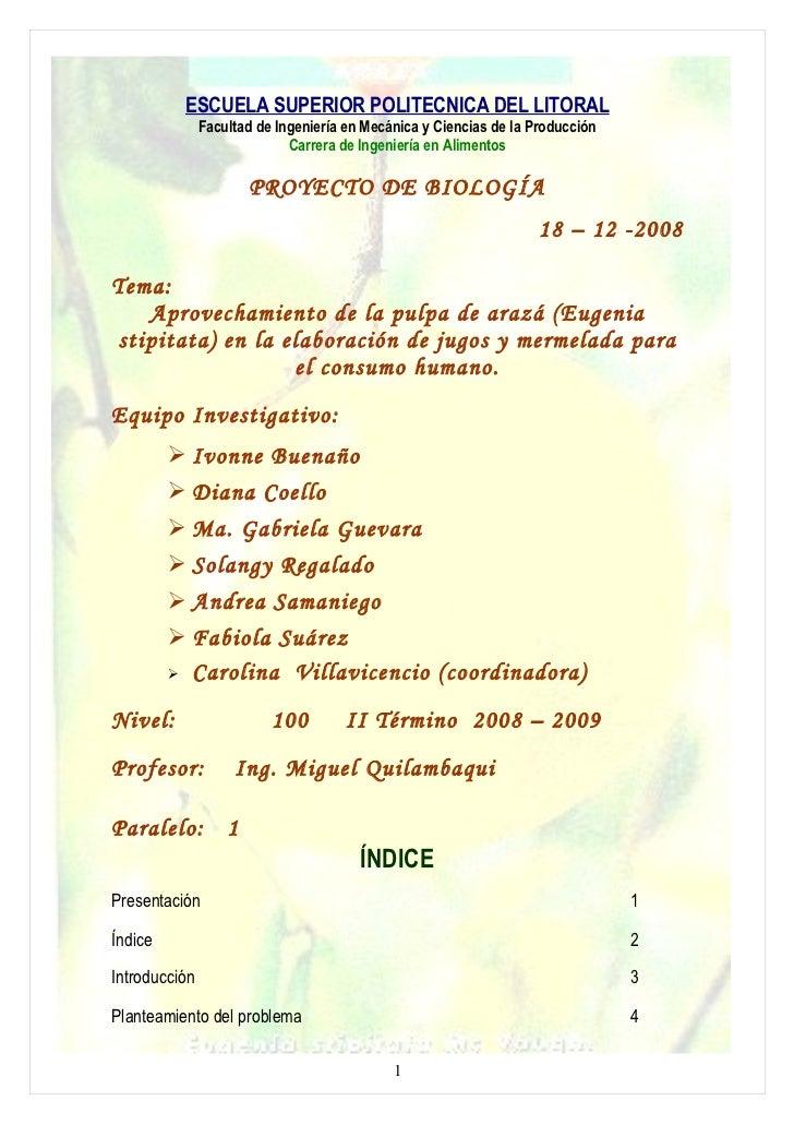 Proyecto Araza