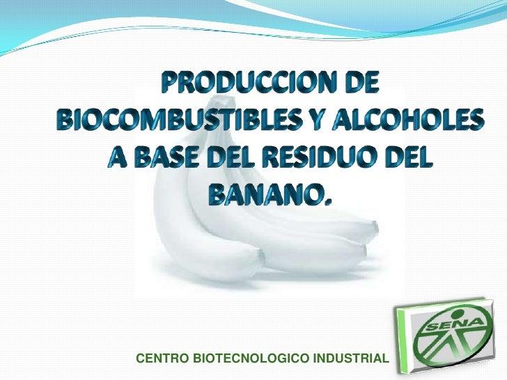 PRODUCCION DE BIOCOMBUSTIBLES Y ALCOHOLES A BASE DEL RESIDUO DEL BANANO.<br />CENTRO BIOTECNOLOGICO INDUSTRIAL<br />