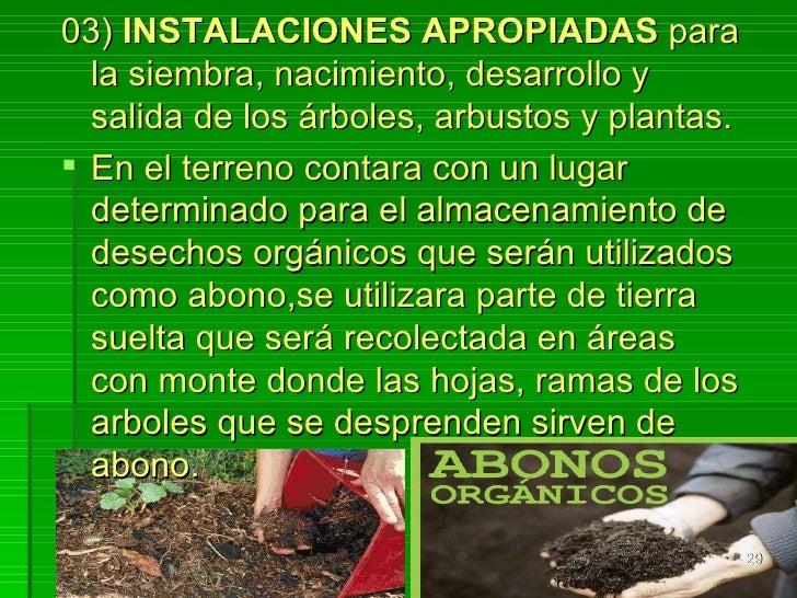 Proyecto comunidad verde desde la escuela for Proyecto vivero forestal pdf