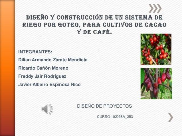 DISEÑO Y CONSTRUCCIÓN DE UN SISTEMA DE RIEGO POR GOTEO, PARA CULTIVOS DE CACAO Y DE CAFÉ.
