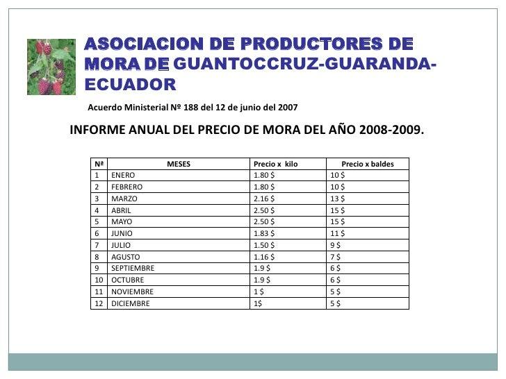 ASOCIACION DE PRODUCTORES DE MORADEGUANTOCCRUZ-GUARANDA- ECUADOR<br />Acuerdo Ministerial Nº 188 del 12 de junio del 2007<...