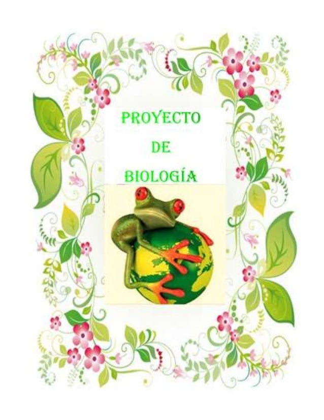 Proyecto de biologia - Marcos para plantas ...