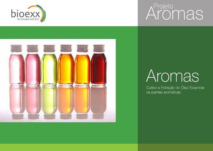Proyecto de yerbas exoticas para aceites esenciales