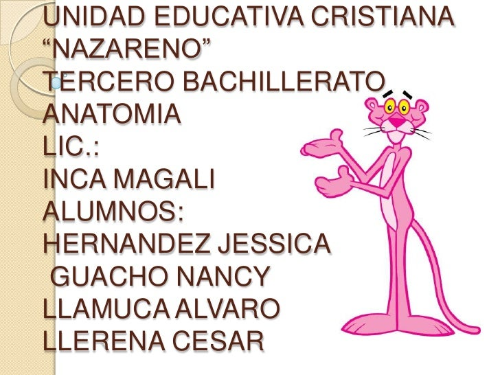 "UNIDAD EDUCATIVA CRISTIANA""NAZARENO""TERCERO BACHILLERATOANATOMIALIC.:INCA MAGALIALUMNOS:HERNANDEZ JESSICA GUACHO NANCYLLAM..."
