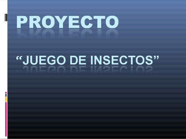 Proyecto de insectos[1]