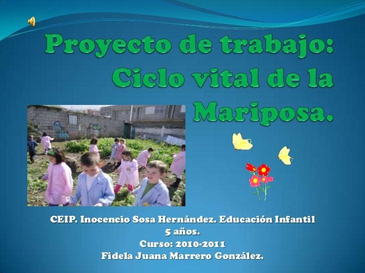 Proyecto de trabajo:Ciclo vital de la Mariposa.<br />CEIP. Inocencio Sosa Hernández. Educación Infantil 5 años.<br />Curso...