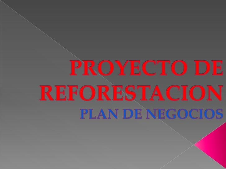Proyecto de reforestacion 4