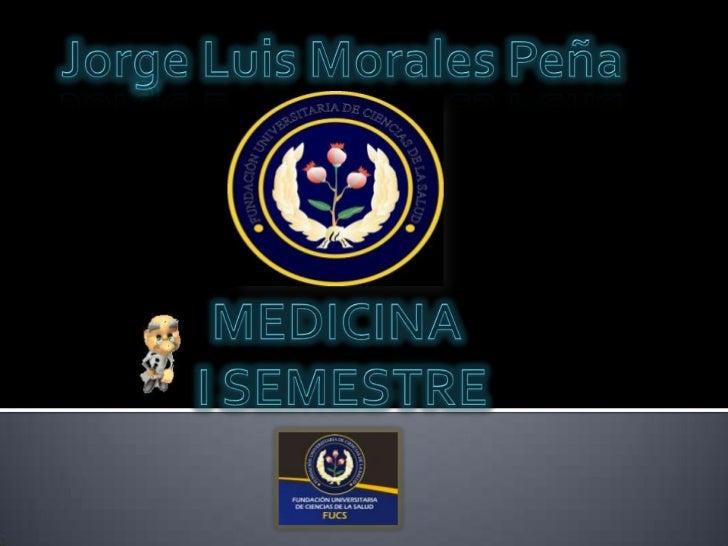 Jorge Luis Morales Peña<br />MEDICINA <br />I SEMESTRE<br />