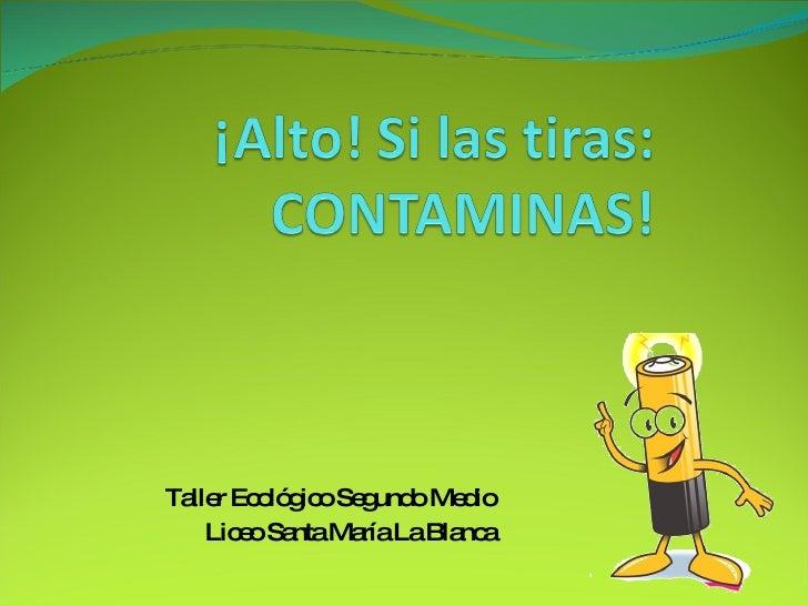 Taller Ecológico Segundo Medio Liceo Santa María La Blanca